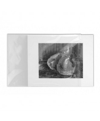 22x16cm (A5 Plus) Acid Free Print Sleeves for Archival (25 Pack)